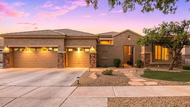 302 W Macaw Drive, Chandler, AZ 85286 (MLS #5962819) :: CC & Co. Real Estate Team