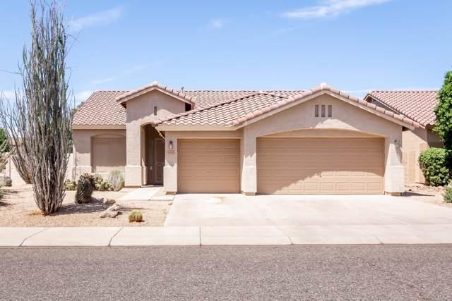 5444 W Greenbriar Drive, Glendale, AZ 85308 (MLS #5963219) :: CC & Co. Real Estate Team