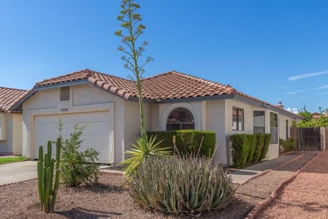 11626 W Olive Drive, Avondale, AZ 85392 (MLS #5963237) :: Brett Tanner Home Selling Team