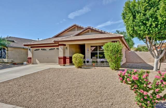 10246 W Daley Lane, Peoria, AZ 85383 (MLS #5963349) :: Conway Real Estate