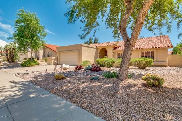 10487 E Terra Drive, Scottsdale, AZ 85258 (MLS #5963488) :: The Kenny Klaus Team