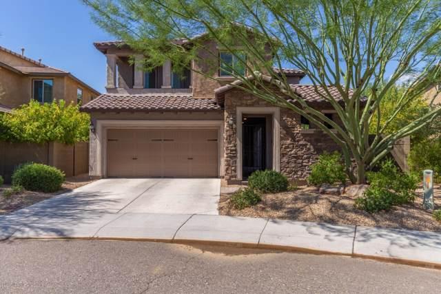 3616 E Salter Drive, Phoenix, AZ 85050 (MLS #5963639) :: Conway Real Estate