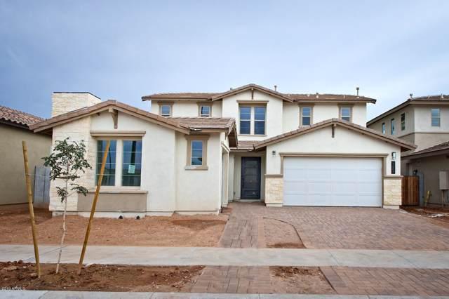 1682 S Henry Lane, Gilbert, AZ 85295 (MLS #5963646) :: Revelation Real Estate
