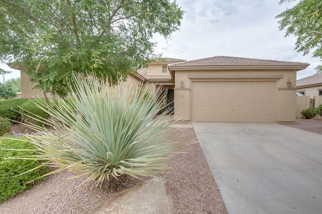 3878 E Gemini Place, Chandler, AZ 85249 (MLS #5963675) :: CC & Co. Real Estate Team