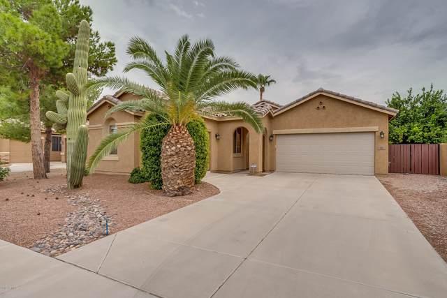 95 W Goldfinch Way, Chandler, AZ 85286 (MLS #5963688) :: CC & Co. Real Estate Team