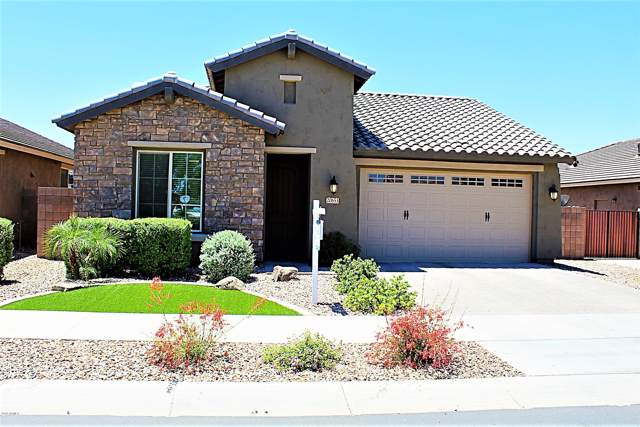 20653 E Raven Drive, Queen Creek, AZ 85142 (MLS #5963807) :: Revelation Real Estate