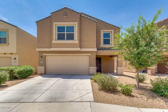 24018 N Brittlebush Way, Florence, AZ 85132 (MLS #5963848) :: Occasio Realty