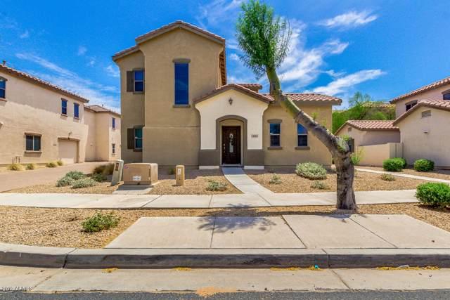 14865 W Ashland Avenue, Goodyear, AZ 85395 (MLS #5963942) :: CC & Co. Real Estate Team