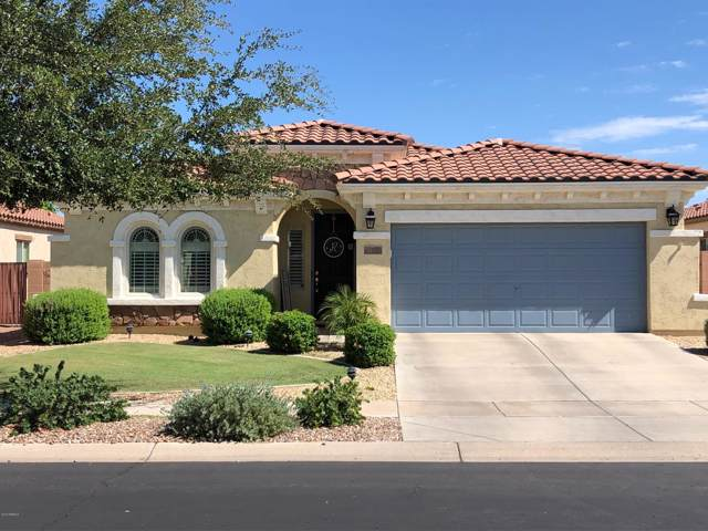 936 E La Costa Place, Chandler, AZ 85249 (MLS #5964022) :: Revelation Real Estate
