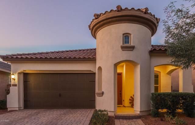20646 W Nelson Place, Buckeye, AZ 85396 (MLS #5964030) :: Yost Realty Group at RE/MAX Casa Grande