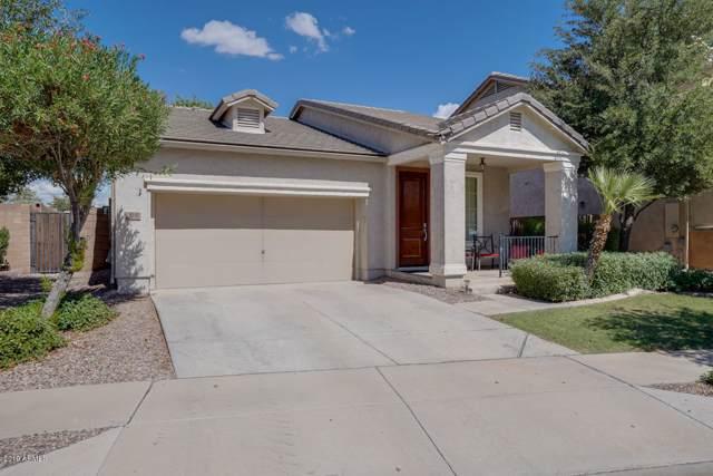 2141 S Jacana Lane, Gilbert, AZ 85295 (MLS #5964052) :: Revelation Real Estate