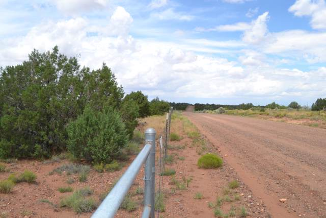 TBD Cr 5575, Concho, AZ 85924 (MLS #5964078) :: Kortright Group - West USA Realty