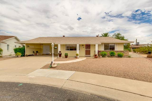 13816 N 103RD Way, Sun City, AZ 85351 (MLS #5964114) :: Conway Real Estate