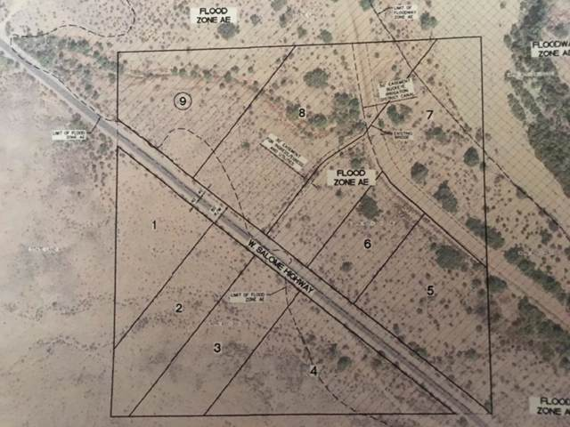 31615 W Salome Highway, Buckeye, AZ 85326 (MLS #5964151) :: The Carin Nguyen Team