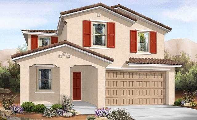 29906 N 115TH Glen, Peoria, AZ 85383 (MLS #5964212) :: Brett Tanner Home Selling Team