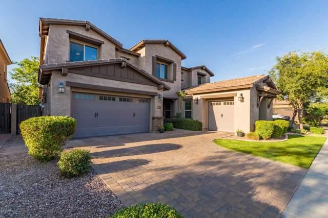2946 E Blue Sage Road, Gilbert, AZ 85297 (MLS #5964261) :: Yost Realty Group at RE/MAX Casa Grande