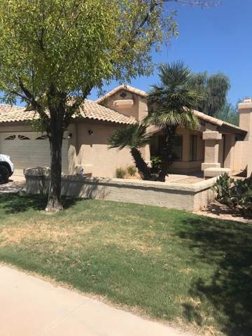 5742 W Buffalo Place, Chandler, AZ 85226 (MLS #5964391) :: CC & Co. Real Estate Team