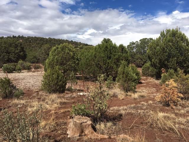 Lot 66 Huff Puff Trail, Vernon, AZ 85940 (MLS #5964450) :: Brett Tanner Home Selling Team