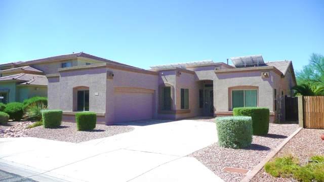 25430 N Hackberry Drive, Glendale, AZ 85310 (MLS #5964496) :: The Laughton Team