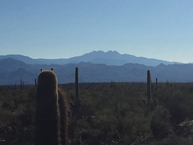 348XX N 144th Street, Scottsdale, AZ 85262 (MLS #5964540) :: The Garcia Group