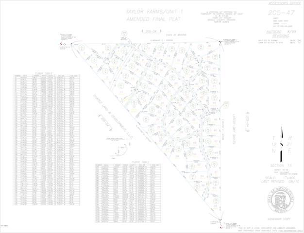 Lot 13 Taylor Farms, Taylor, AZ 85939 (#5964552) :: AZ Power Team | RE/MAX Results