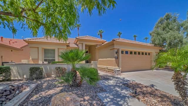 3362 N 159TH Avenue N, Goodyear, AZ 85395 (MLS #5964602) :: Brett Tanner Home Selling Team