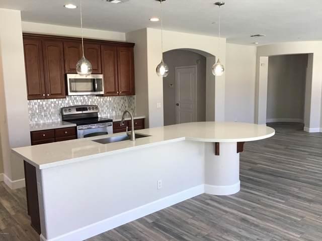 15256 W Elm Street, Goodyear, AZ 85395 (MLS #5964657) :: Yost Realty Group at RE/MAX Casa Grande