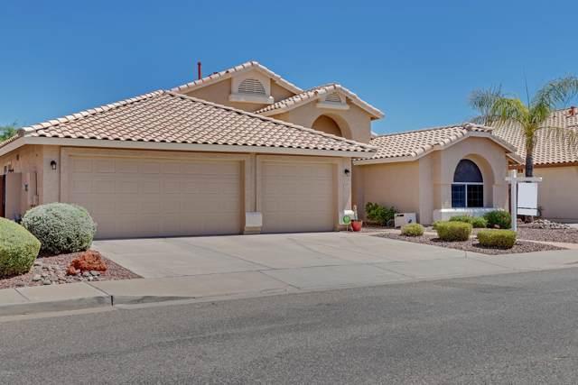 7866 W Oraibi Drive, Glendale, AZ 85308 (MLS #5964671) :: Team Wilson Real Estate