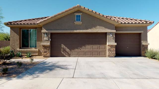12169 W Del Rio Lane, Avondale, AZ 85323 (MLS #5964717) :: CC & Co. Real Estate Team