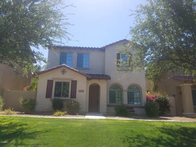 3508 S Falcon Drive, Gilbert, AZ 85297 (MLS #5964785) :: Revelation Real Estate