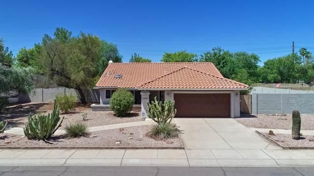 2602 N Yucca Street, Chandler, AZ 85224 (MLS #5964821) :: Lifestyle Partners Team