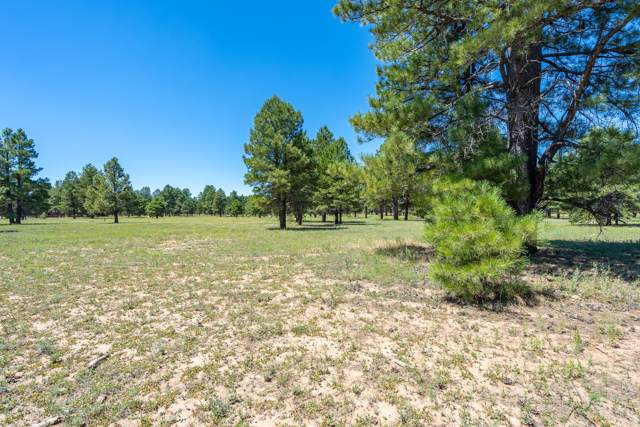 3776 E Twilight Way, Flagstaff, AZ 86005 (MLS #5964964) :: Yost Realty Group at RE/MAX Casa Grande