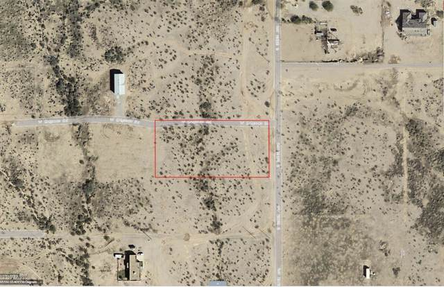 48XX S 351st Avenue, Tonopah, AZ 85354 (MLS #5965060) :: Team Wilson Real Estate