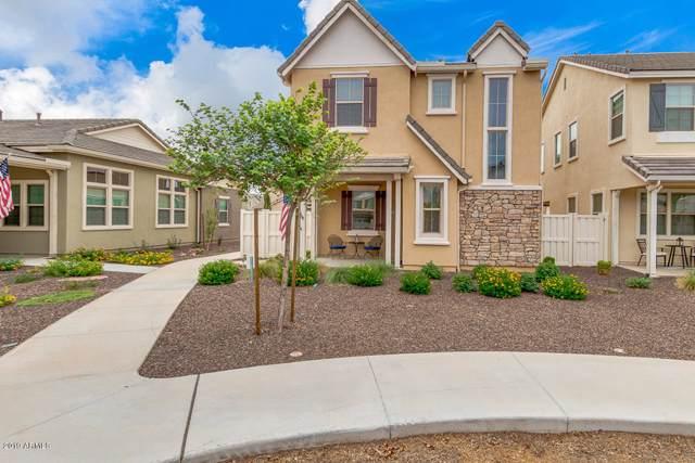 2269 S Annie Lane, Gilbert, AZ 85295 (MLS #5965222) :: Revelation Real Estate