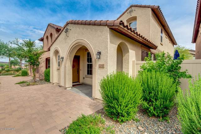 12440 W Hummingbird Terrace, Peoria, AZ 85383 (MLS #5965248) :: Lucido Agency