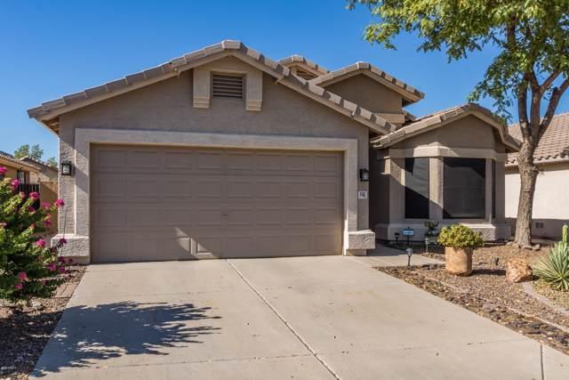 552 W Villa Maria Drive, Phoenix, AZ 85023 (MLS #5965272) :: Nate Martinez Team