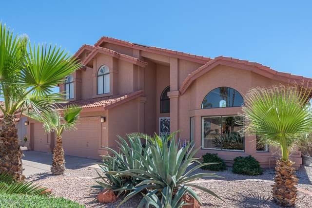 3619 E Desert Flower Lane, Phoenix, AZ 85044 (MLS #5965323) :: Yost Realty Group at RE/MAX Casa Grande