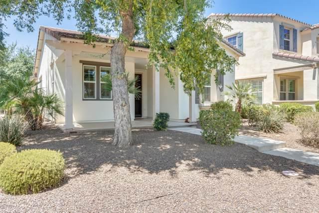 13502 N 149TH Avenue, Surprise, AZ 85379 (MLS #5965377) :: Brett Tanner Home Selling Team