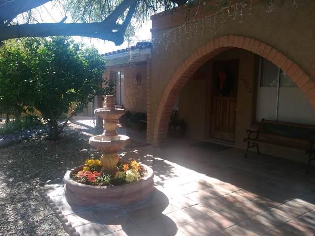 2922 S Juniper Street, Tempe, AZ 85282 (MLS #5965593) :: CC & Co. Real Estate Team