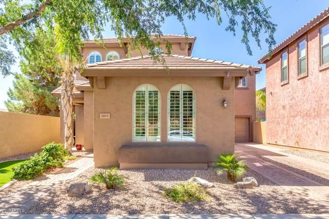 3893 E Fairview Street, Gilbert, AZ 85295 (MLS #5965632) :: Lucido Agency