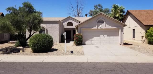 10126 W Medlock Avenue, Glendale, AZ 85307 (MLS #5965664) :: Occasio Realty