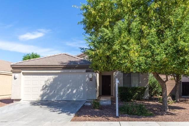 11960 W Camino Vivaz, Sun City, AZ 85373 (MLS #5965677) :: Occasio Realty
