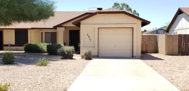 2937 E Impala Avenue, Mesa, AZ 85204 (MLS #5965686) :: Revelation Real Estate