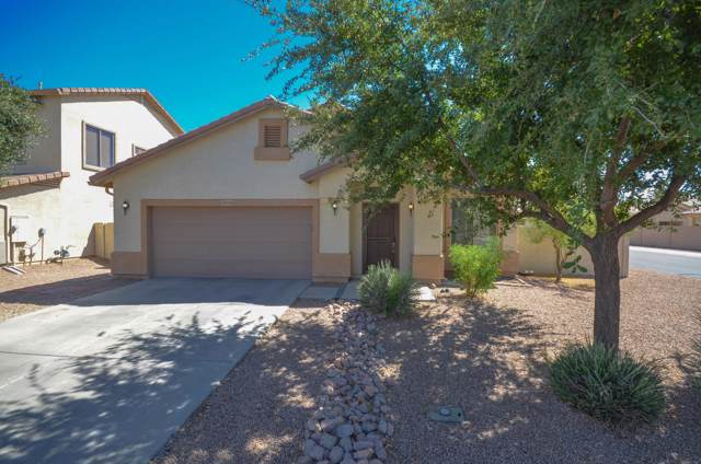 44301 W Buckhorn Trail, Maricopa, AZ 85138 (MLS #5965785) :: Team Wilson Real Estate