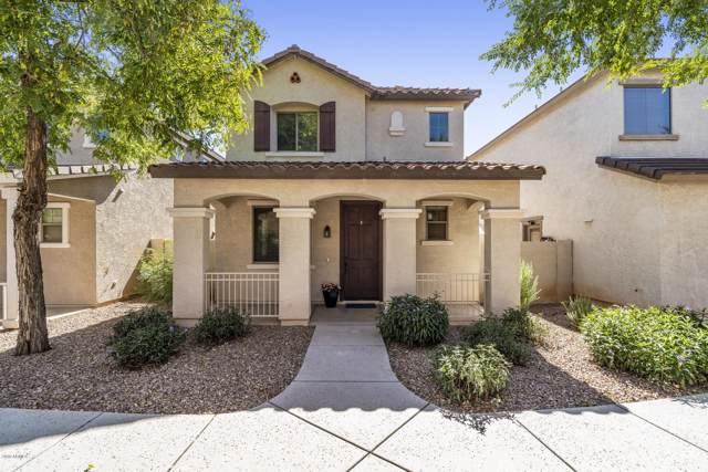 124 E Catclaw Street, Gilbert, AZ 85296 (MLS #5965824) :: Team Wilson Real Estate
