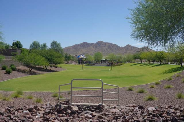 3756 W Lanham Drive, New River, AZ 85087 (MLS #5966031) :: The Daniel Montez Real Estate Group