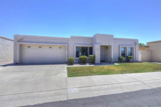 921 E Villa Rita Drive, Phoenix, AZ 85022 (MLS #5966098) :: Nate Martinez Team