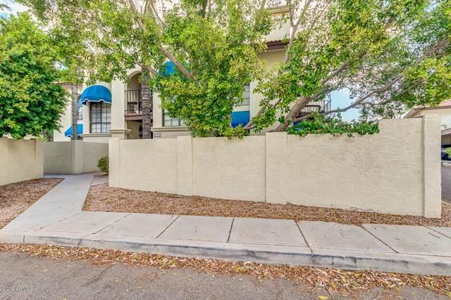 4914 E Siesta Drive #2, Phoenix, AZ 85044 (MLS #5966154) :: Yost Realty Group at RE/MAX Casa Grande