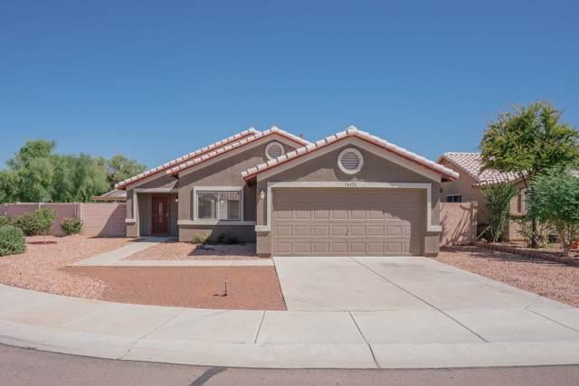 16126 W Mesquite Drive, Goodyear, AZ 85338 (MLS #5966161) :: Team Wilson Real Estate