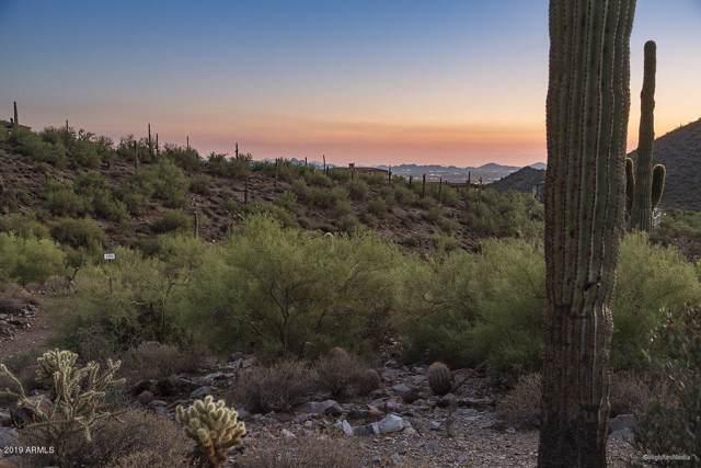 11135 E Canyon Cross Way, Scottsdale, AZ 85255 (MLS #5966167) :: Team Wilson Real Estate